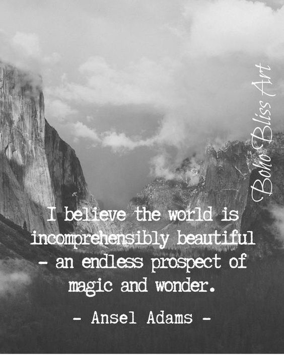 I believe the world is incomprehensibly beautiful - an endless prospect of magic and wonder. Ansel A