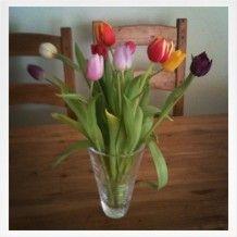 #Easter flowers