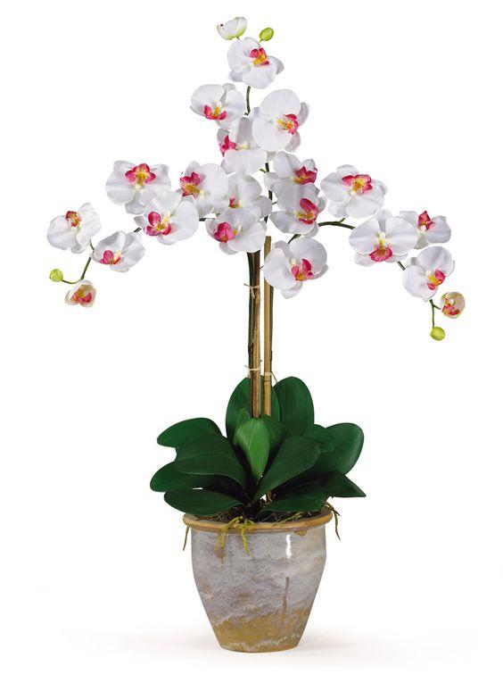 Triple Phalaenopsis Silk Orchid Flower