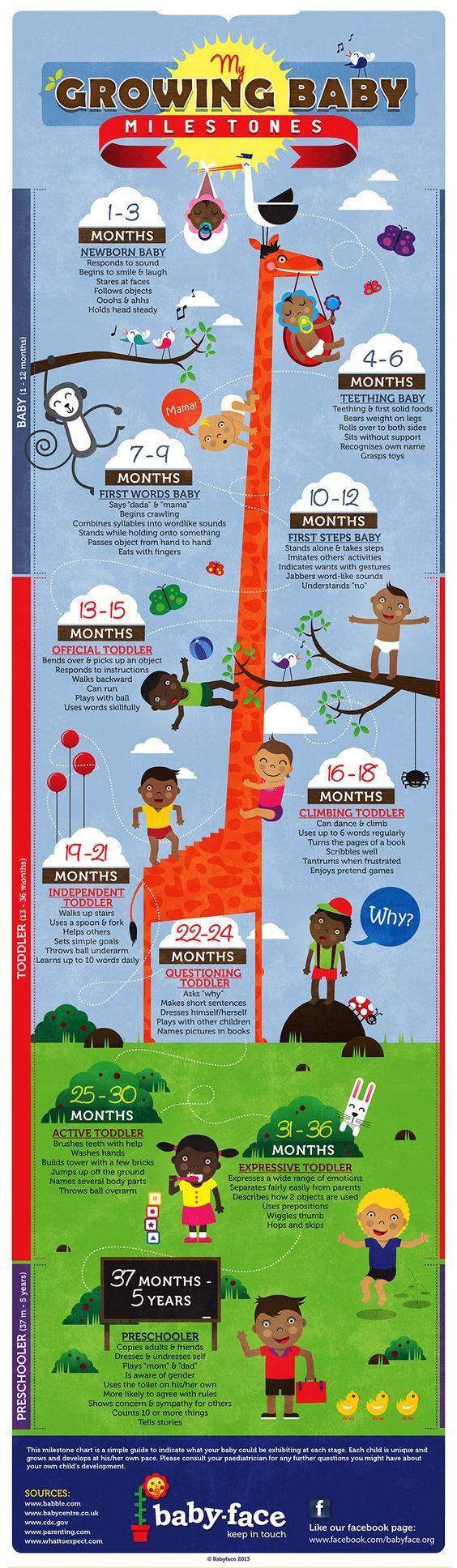 #baby milestones infographic