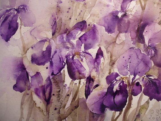 #iris #flowers #purple