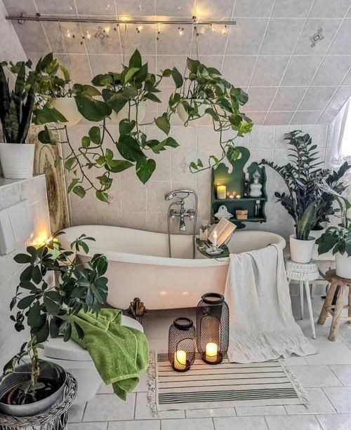 Gewusst Wie Erhohen Sie Die Luftfeuchtigkeit Fur Ihre Pflanzen Halten Sie Ihre Pflanzen Wahrend Pflanzen Zimmer Dekor Haus Deko