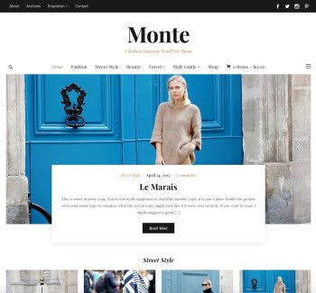 Monte WordPress Theme - WP Zoom
