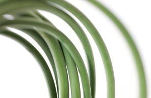 Graceful garlic scapes offer the makings of a quick, light side dish or a pesto for pasta or crackers.