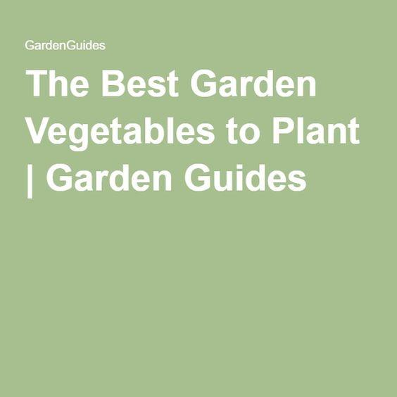 The Best Garden Vegetables to Plant   Garden Guides