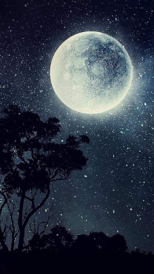 Pin By Lisa Rankin On Paysage Moon Art Moon Photography Night Sky Wallpaper Cool night sky moon wallpaper for
