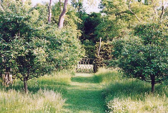 orchard Miranda Brooks Garden at Lane End Pinterest
