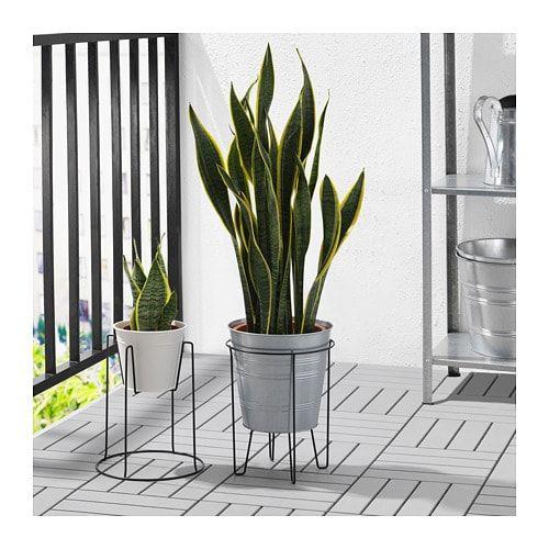 Mobel Einrichtungsideen Fur Dein Zuhause Plant Stand Indoor