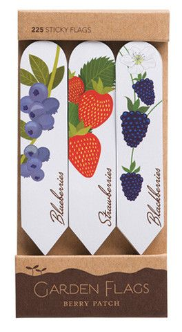Garden Stakes- Berry Patch- Sticky Notes