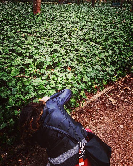 . Elle est verte la terre de mon poème.. . Mon ciel se repose dans ton regard.. Et ma terre t'appartient.. . #beautiful #arbre #naturelovers #nature #green #parc #lyon #lyoncity #monlyon #parcdelatetedor #onlylyon #igerslyon #igersfrance #ig_france #loves_syria #loves_france #loves_lyon #loves_france_ by mika01091973