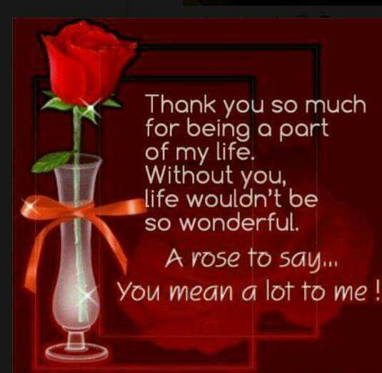 Thank You For Saving Me Quotes: Thank You So Much, Without You And Say You On Pinterest