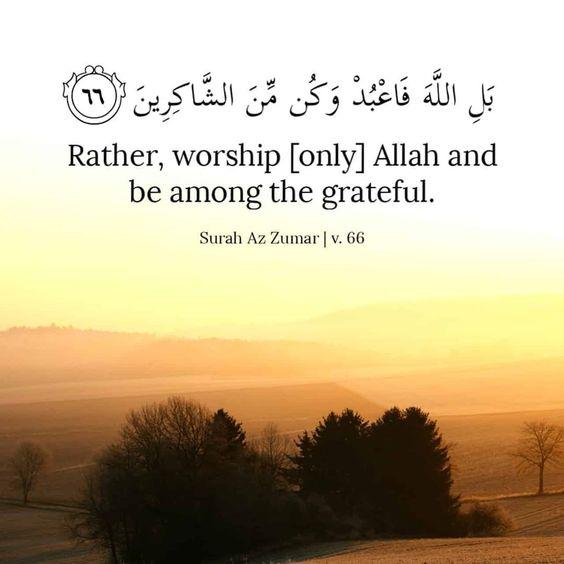 Follow Us On Instagram At Hopefulrepenter Hopefulrepenter Hopefulrepenter Quran Quotes Islamic Inspirational Quotes Quran Quotes Verses