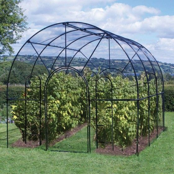 This stunning Roman Roof Fruit Cage will make a statement in any garden as well as being practical and functional. It is constructed from black polymer coated galvanised steel and has a centre height of 10ft, enabling protection for dwarf fruit trees such as cherry and plum , which in most cases are too large for conventional garden fruit cages (http://www.agriframes.co.uk/roman-fruit-cage.html) £620