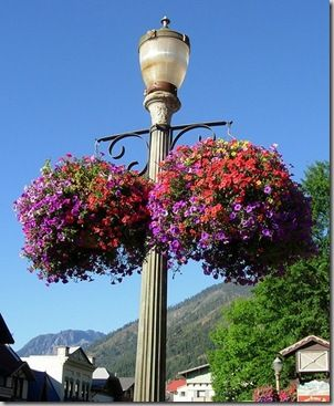 How to make hanging flower baskets...