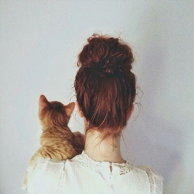 kitten and messy bun