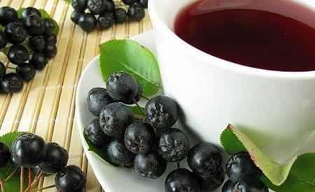 Aronia Melanocaroa | Chokeberry | Aronia | HealthyFoodEncyclopedia.com