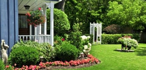 Low Cost Landscape That Makes a Big Impact