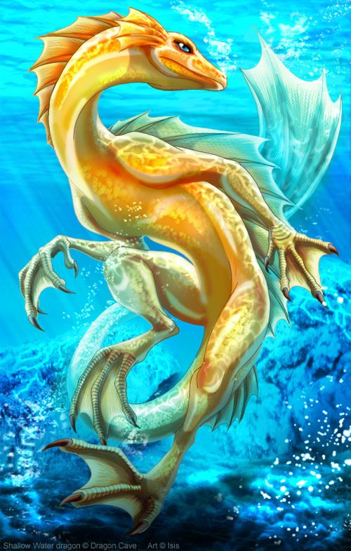 22 Cool Water Dragon Illustrations on http://naldzgraphics.net