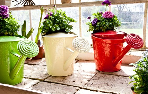 Water can flower pots