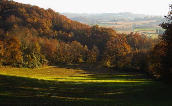 Au creux du vallon, Peyrelongue-Abos, Vic-Bilh, Béarn, Pyrénées Atlantiques, Aquitaine, France. #VicBilh #autumn #trees