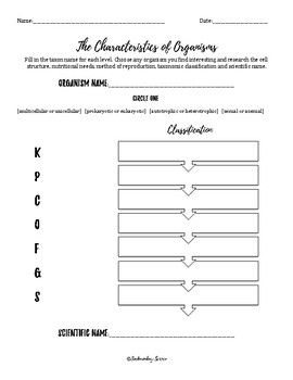 Binomial Nomenclature Worksheet - worksheet