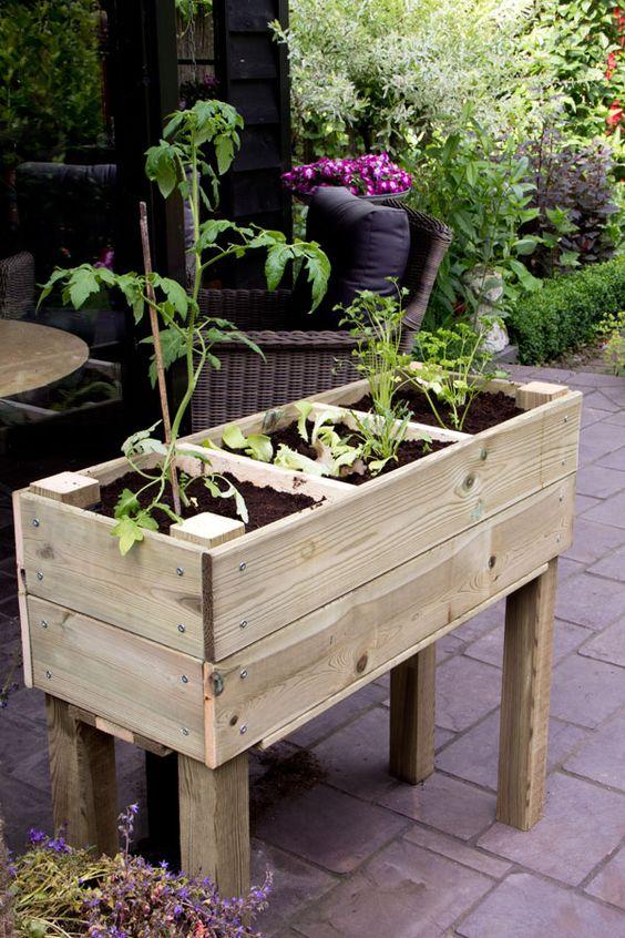 Zelf je groenten of kruiden kweken in een zelfgemaakte moestuinbak gardening - Groenten in potten op balkons ...