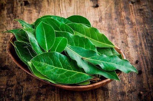 bay frunze ajută la pierderea în greutate)