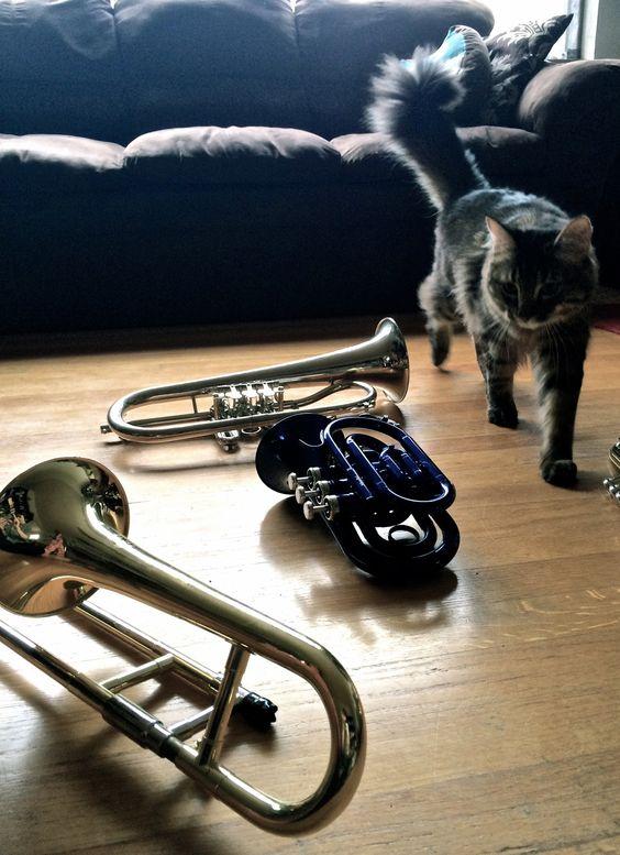 Brokkr, flugelhorn, pocket trumpet and slide trumpet.