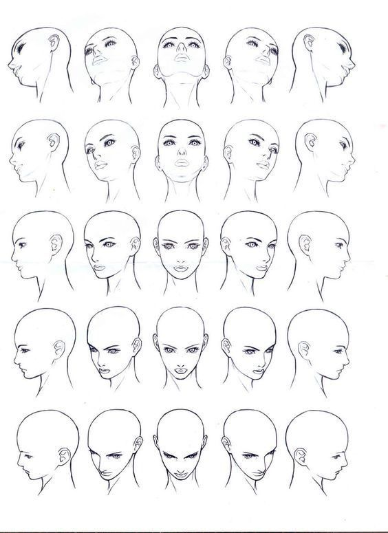 Face View I Don T Who Is The Author Face Angles Body Drawing Human Body Drawing