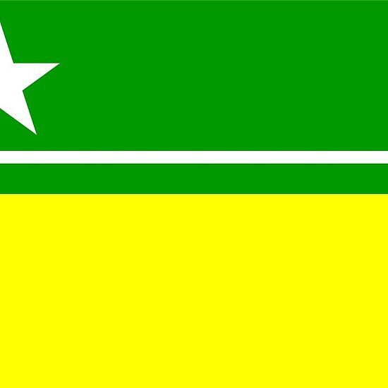 Flag Bandeira De Mato Grosso Do Sul On Button Affiliate De
