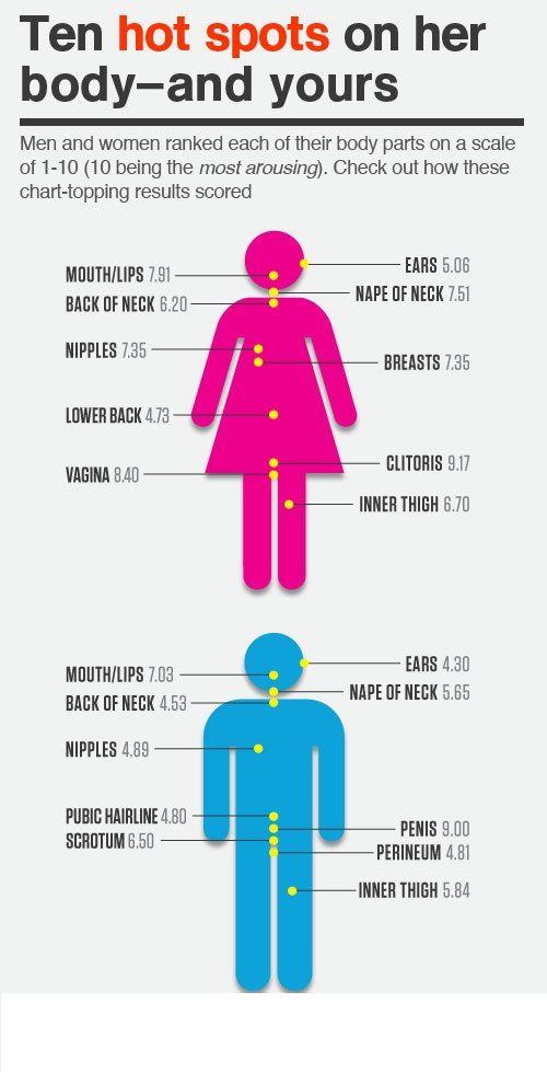 Interesting. Tell female erogenous zones diagram