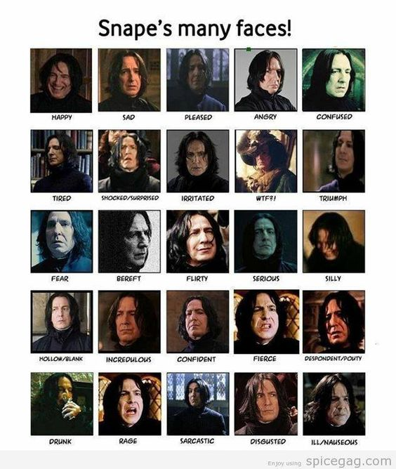 severus snape and harry potter relationship