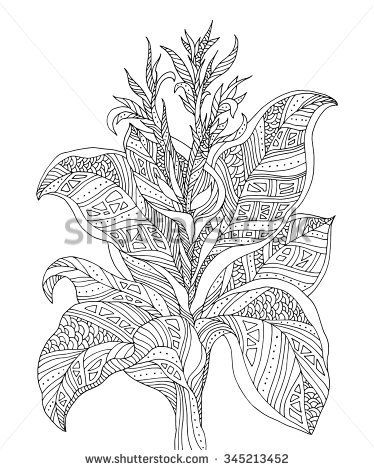 Forest exotic jungle plant, bush, flowers, branch with leaves. Vector. Coloring book page for adults. Hand drawn artwork. Bohemia concept for cards, tickets, branding, logo, label. Black and white