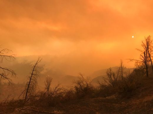 Camp Fire Storms Through Paradise Triggering Terrifying And
