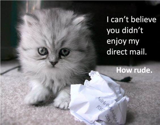 Silly Kitten. Direct mail doesn't work. http://blog.hubspot.com/blog/tabid/6307/bid/26181/The-Painful-Truth-About-Outbound-Marketing-Kittens-Humor.aspx