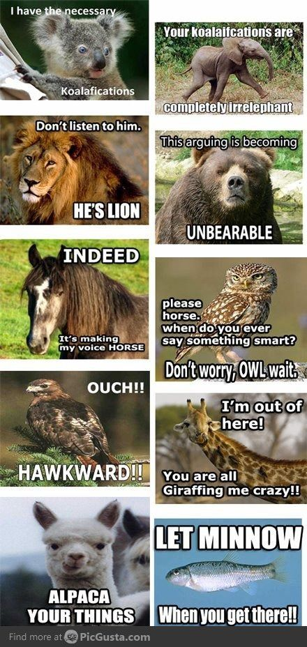 Oh so many animal puns! Groan.... naw c'mon you know you love it. ;)