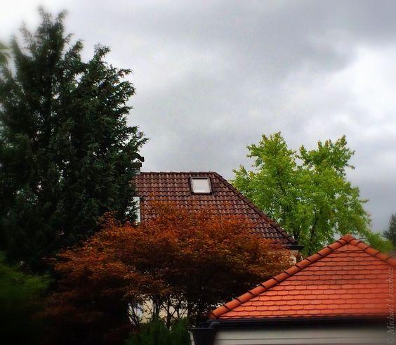 Colours by Michael Livschitz on 500px/  Perlach München/ baum, cloud, dachpfanne, haus, himmel, house, housetop, munich, quadrel, roof, sky, tile, tree, wolke, ziegel, bedachung