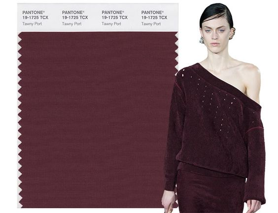 Fall/ Winter 2017-2018 Pantone Colors: Tawny Port