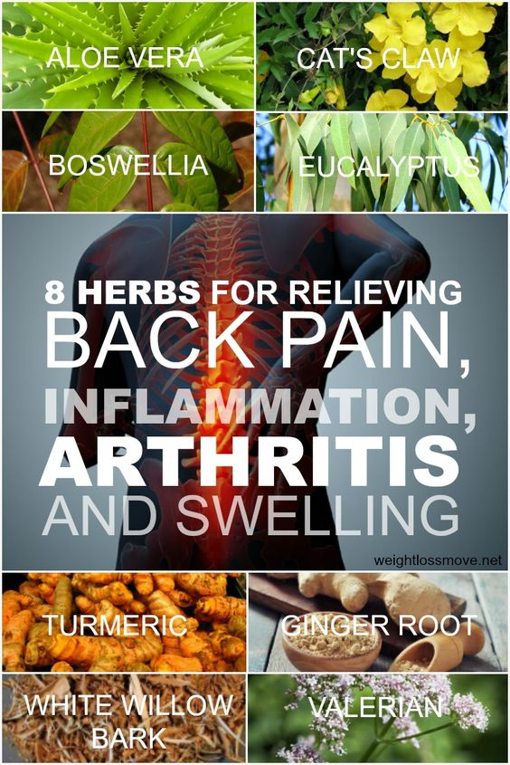 8 Herbs For Relieving Back Pain, Inflammation, Arthritis And Swelling - Weight…