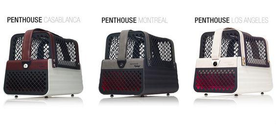 4Pets Penthouse Hundeboxen für Kleinhunde bis 5 kg chic, edel und aussergewöhnlich