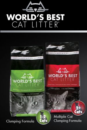 Seriously the world's best cat litter.