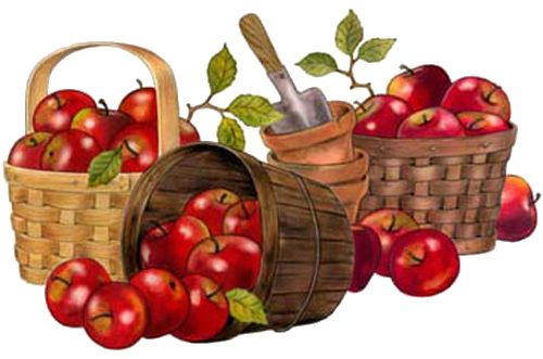 Apples n' Baskets: