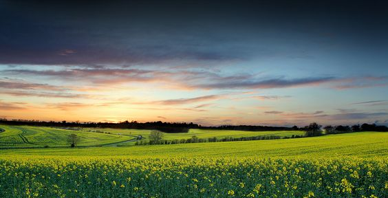 Spring in the English Countryside by Rob K. Baggs, via 500px