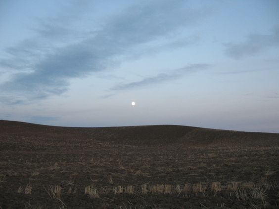 October Moon in Moscow Idaho: 1Rylees Awesome, October Moon, Awesome Idaho, Places I Ve