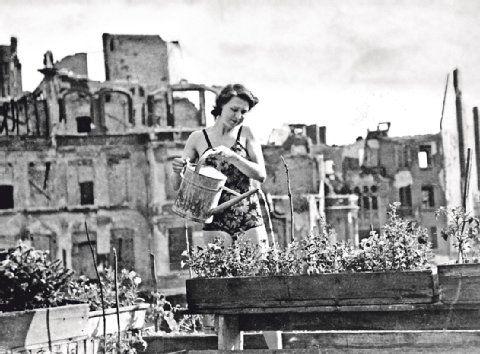 Berlin 1945: Die Stadt liegt in Trümmern, das Leben geht weiter. Eine Frau gießt Pflanzen. Jedes Fleckchen wird genutzt, um etwas anzubauen, sei es auf einem Balkon oder im Tiergarten.