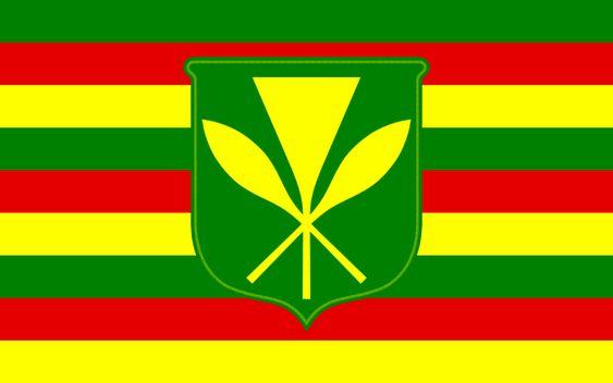 Hawaii Historical Flags Historical Flags Hawaii Flag Hawaiian Flag