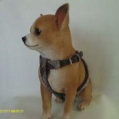 Harnais petit chien écossais violet