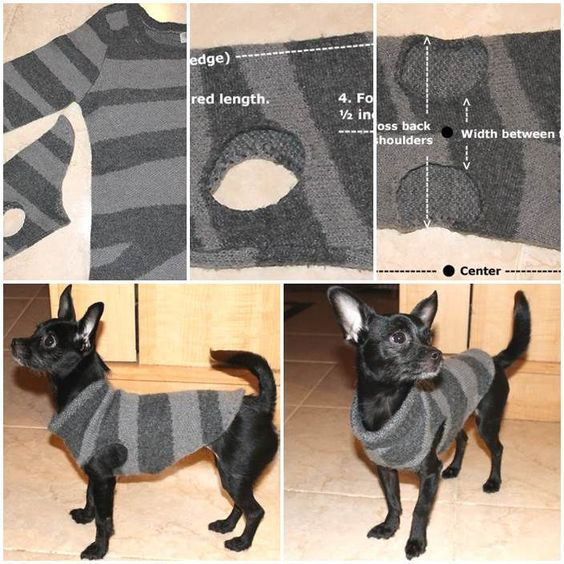 Finally a use for that old sweater you wore out this winter. Just turn it into a sweater for your furry friend.
