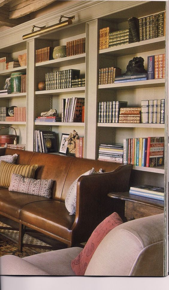 great bookcases and leather couch