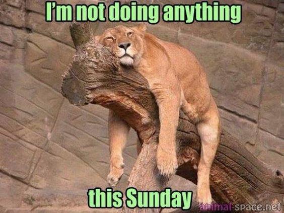 Lekker luie zondag